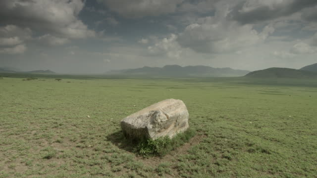 Tracking shot around a boulder on the plains of the Serengeti National Park.
