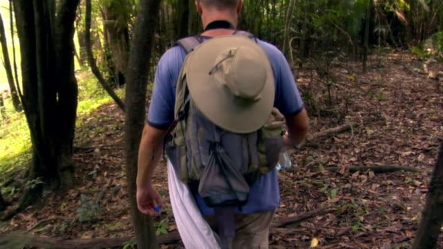 tracking shot couple hiking in rainforest / the amazon, brazil - paar mittleren alters stock-videos und b-roll-filmmaterial