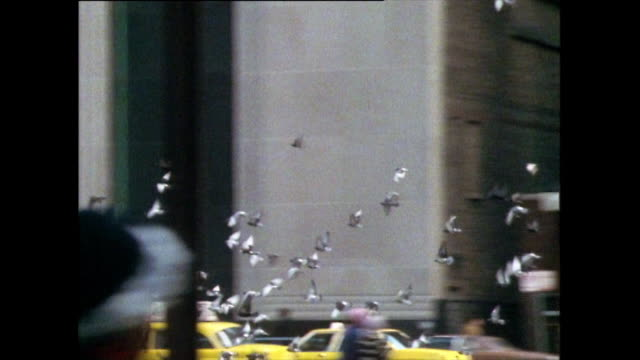 tracking shot down street in central chicago; 1985 - passenger point of view stock videos & royalty-free footage