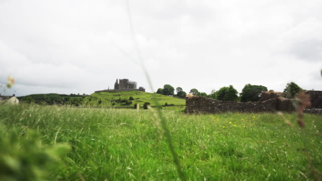 Tracking shot, lush field in Ireland