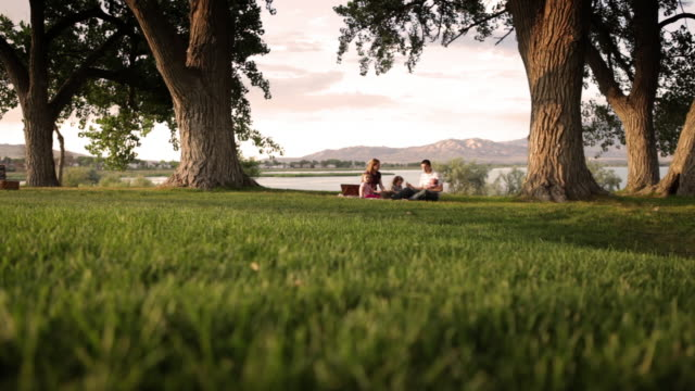 vídeos de stock e filmes b-roll de a tracking shot of a family of five having a delicious picnic on a stunning green field of grass. - picnic