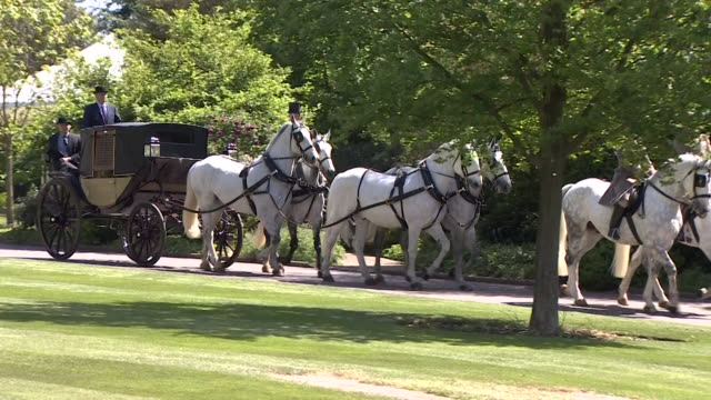 vidéos et rushes de tracking shot of a horse drawn carriage near st george's chapel during the rehearsal for the wedding of prince harry and meghan markle in windsor - voiture attelée