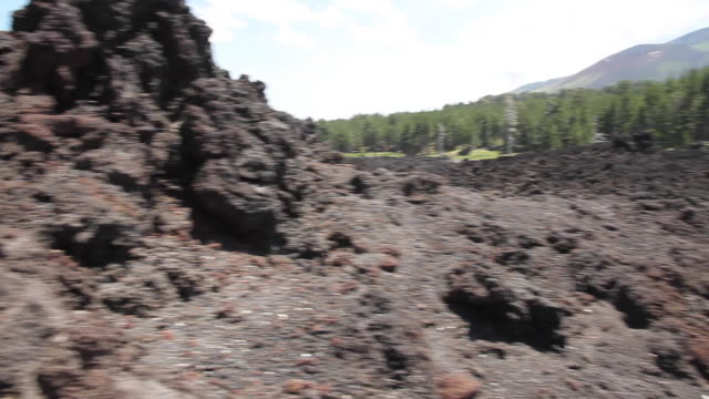 tracking shot of a lava flow on the slopes of mount etna, sicily - bare tree stock videos & royalty-free footage