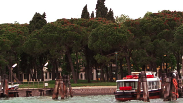 tracking shot of a wooded park in venice, from a water taxi - water taxi stock videos & royalty-free footage
