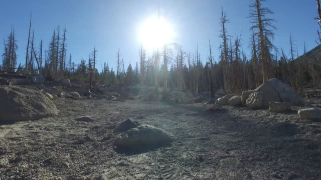 tracking shot of an empty hiking trail in the mountains. - mammoth lakes video stock e b–roll