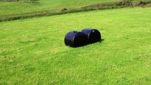 tracking shot of bales of silage or hay wrapped in black plastic in a field in rural dumfries and galloway, south west scotland - bale stock videos & royalty-free footage