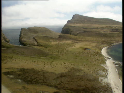 stockvideo's en b-roll-footage met tracking shot of barren green areas of falkland islands with small cliffs slopes stretching out to sea - falklandeilanden