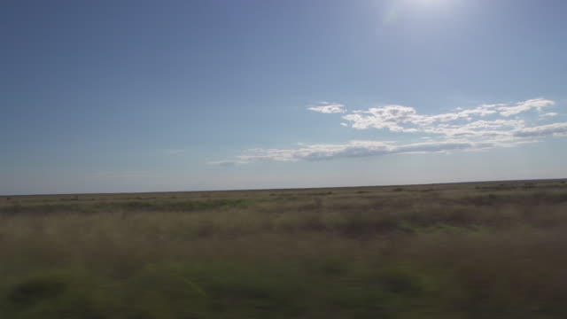 Tracking shot of clouds over grasslands