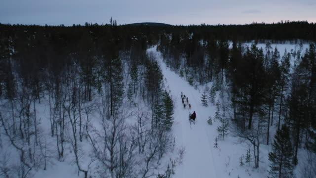 stockvideo's en b-roll-footage met het volgen schot van hond sleeën op diep sneeuwbos in het winterseizoen - sledehond