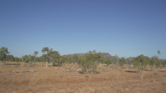 Tracking shot of dry bushlands