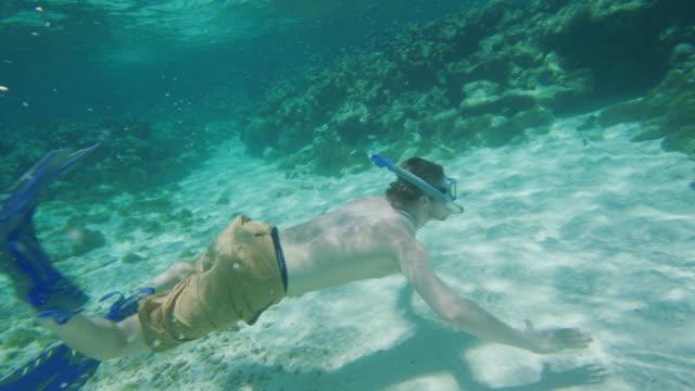 tracking shot of man snorkeling underwater in ocean / tobago cays, saint vincent and the grenadines - badbyxor bildbanksvideor och videomaterial från bakom kulisserna