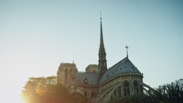 tracking shot of the east side of notre-dame de paris emerging from the trees, streetlamps - turmspitze stock-videos und b-roll-filmmaterial