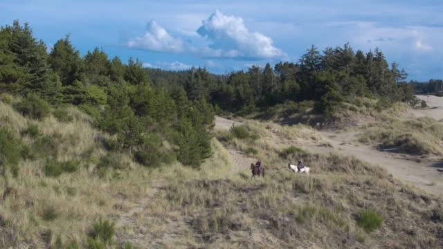 tracking shot of two girls riding on horses - pälsteckning bildbanksvideor och videomaterial från bakom kulisserna