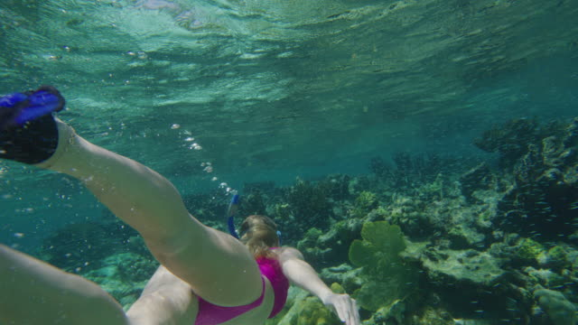 tracking shot of woman snorkeling underwater in ocean then surfacing / tobago cays, saint vincent and the grenadines - surfacing stock videos & royalty-free footage