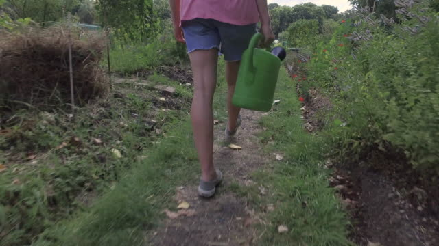 Tracking shot of woman walking and water plants in allotment garden.