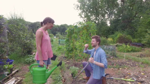 tracking shot of woman walking in allotment, she stops to chat to gardener. - spade stock videos & royalty-free footage