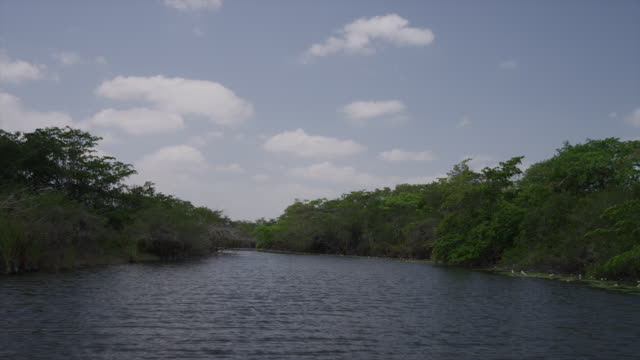 Tracking shot over remote New River / New River, Lamani, Belize,