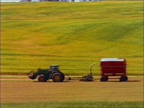 tracking shot slow tractor with wheat harvester moving thru field / hussar, british columbia - cinematography stock videos & royalty-free footage
