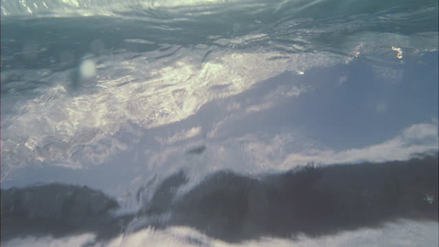 Tracking, slow-motion shot of a surfboard under the water with bubbles drifting up.