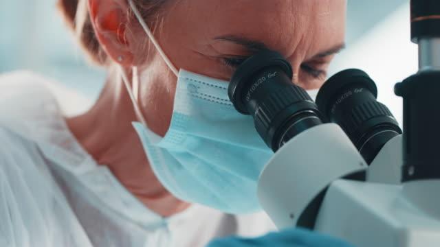 vídeos y material grabado en eventos de stock de seguimiento de los movimientos de los microorganismos - patólogo