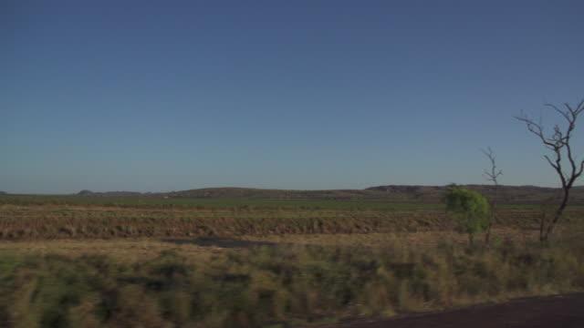 Tracking through bushlands