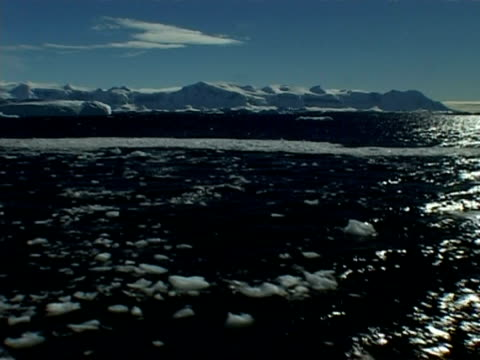 wa tracking through sea against icy mountainous horizon, pan right, antarctic peninsula - antarctic peninsula stock videos & royalty-free footage