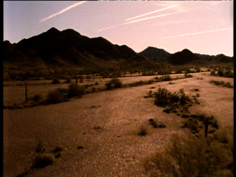 tracks forward through arizona desert with filter effect applied - barrel cactus stock videos and b-roll footage