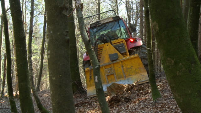 hd: tractor at work - spruce stock videos & royalty-free footage