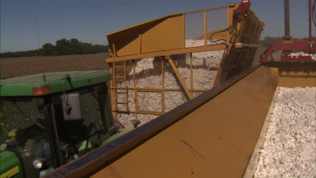 CU of tractor getting ready to dump harvested cotton into compactor.