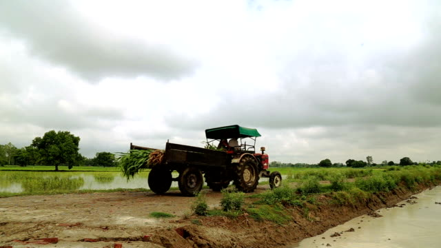 Tractor going through field