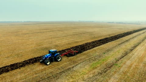 tractor harrowing field and flock of birds whirling over ground - effort stock videos & royalty-free footage
