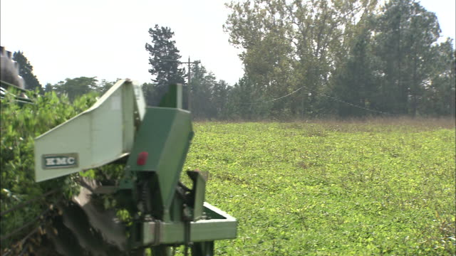 a tractor harvests peanuts in georgia. - peanut food stock videos & royalty-free footage