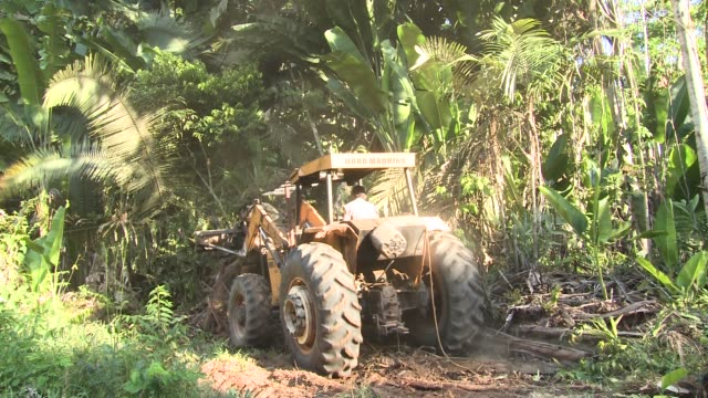 a tractor is used to clear land in rondonia brazil during june 2017 deforestation is increasing in the brazilian amazon and rose 29 percent between... - industria forestale video stock e b–roll
