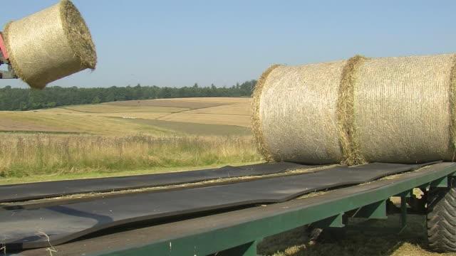 vídeos de stock, filmes e b-roll de ms tractor loading bales of straw on field / saarburg, rhineland palatinate, germany - fardo