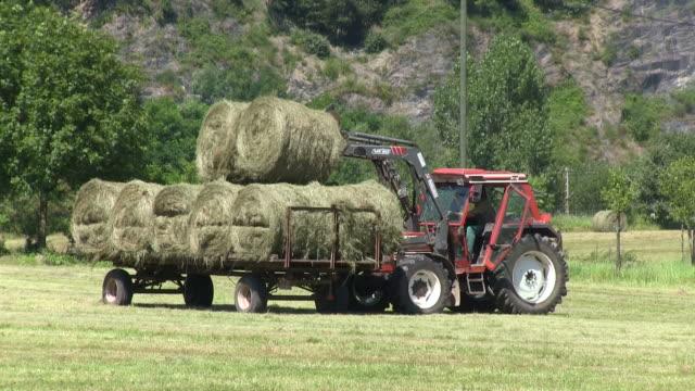 vídeos de stock, filmes e b-roll de ms pan tractor loading hay bales on field / saarburg, rhineland palatinate, germany - fardo