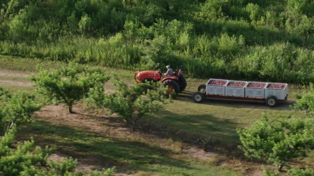 WS TS AERIAL POV Tractor moving in Pearson Farm / Fort Valley, Georgia, United States