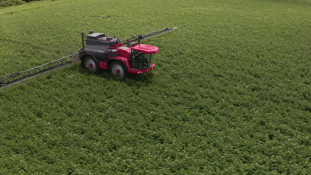 tractor moving on blooming potato field. fertilizing. drone point of view - tractor stock videos & royalty-free footage