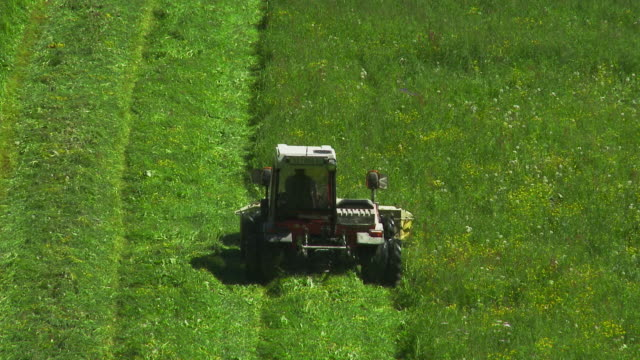 ha tractor mowing grass on alpine meadow - tosaerba video stock e b–roll