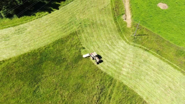 tractor mowing grass - handle stock videos and b-roll footage