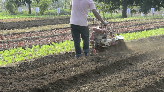 tractor plow the vegetable field - harrow stock videos & royalty-free footage