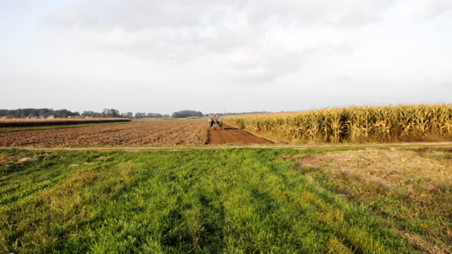 WS Tractor Lavoura o campo