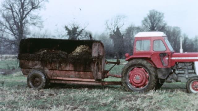 1967 TS Tractor pulling a tanker that is spraying slurry on a farm / United Kingdom