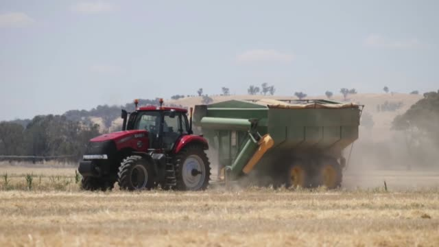 A tractor pulls a chaser bin through a field of barley during harvesting at a farm in Howlong New South Wales Australia on Tuesday Dec 17 A combine...