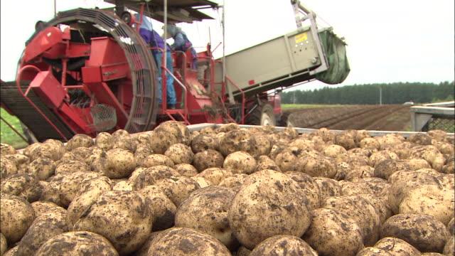 a tractor rolls into a field, past a box of potatoes. - 農作業点の映像素材/bロール