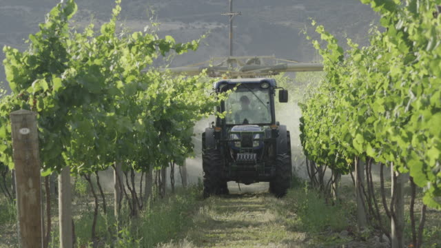 tractor spraying grapewines - vineyard stock videos & royalty-free footage