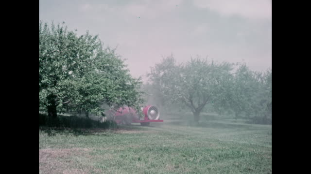 WS PAN Tractor spraying insecticide in orchard / United States