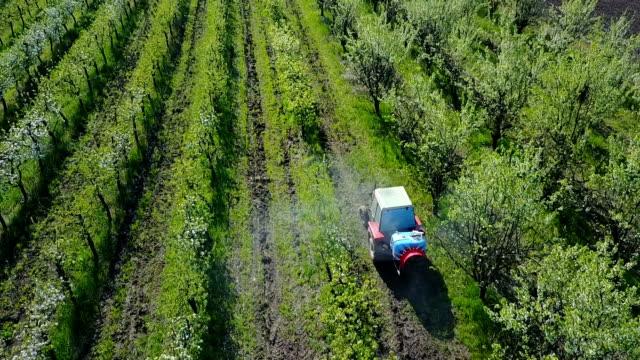 traktor spritzen pflaumenbäume - pflaume stock-videos und b-roll-filmmaterial