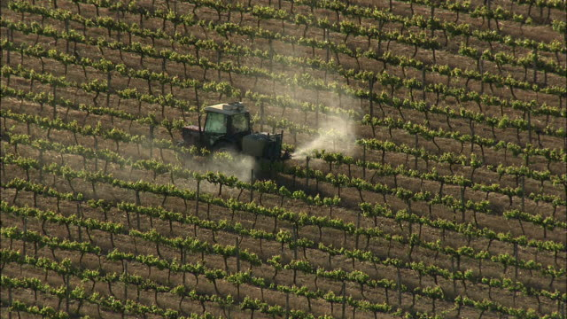 aerial tractor spraying vines with pesticide, stellenbosch, western cape, south africa - stellenbosch stock videos and b-roll footage