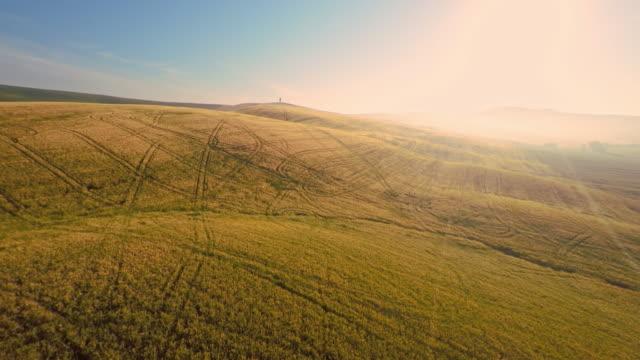vídeos y material grabado en eventos de stock de tractor aérea pistas en el campo de trigo en la toscana - multicóptero