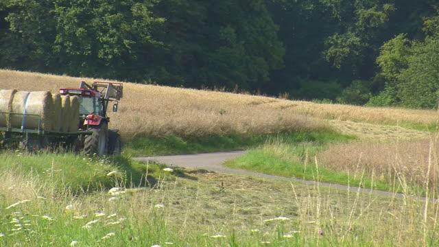 ms tractor transports straw bales / saarburg, rhineland palatinate, germany - bale stock videos & royalty-free footage